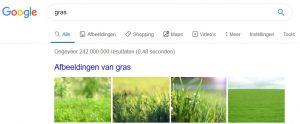 Afbeeldingen in Google zoekresultaten (SEO)